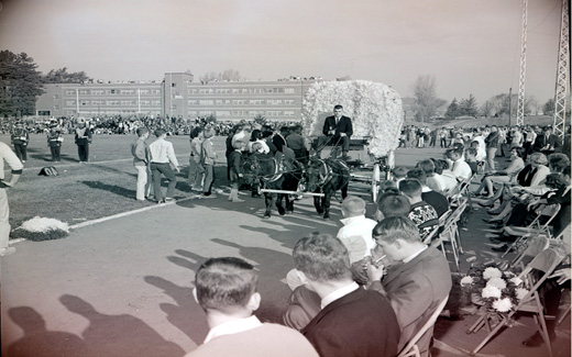 The Northwest 1962 Homecoming Queen arrives in a pomped, horse-drawn carriage for the start of the 归国 Football Game.