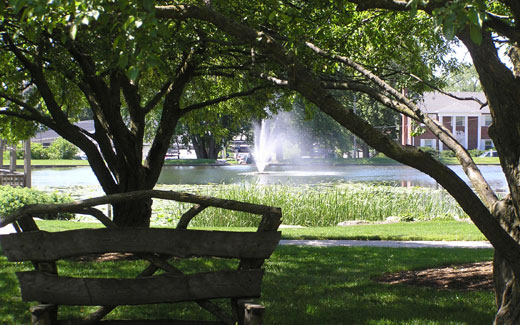 Biodiversity is a top goal for plant accession at Northwest since Dutch Elm Disease killed off many of the elm trees on campus, which were in the majority, during the 1970s.